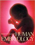 abortion science larsen